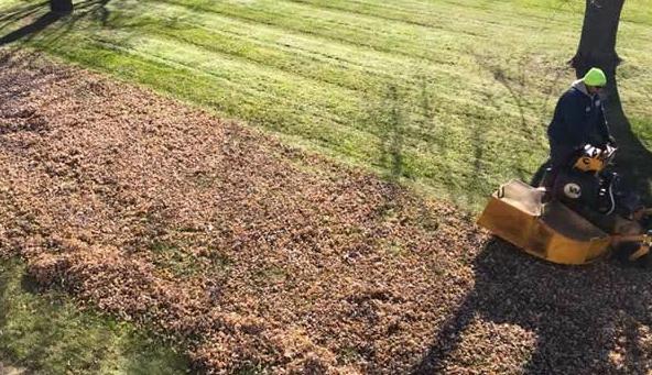 spring clean up brookfield ct