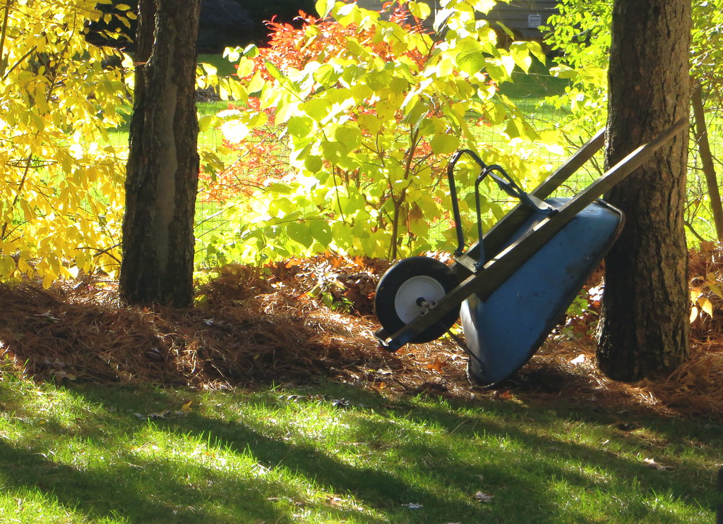 fall clean up in brookfield ct